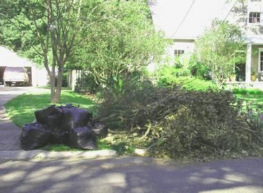yard clean up