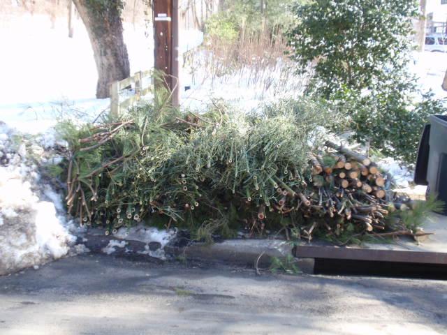 debris removal Atlanta, GA