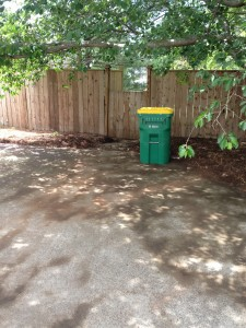 debris removal and cleanup